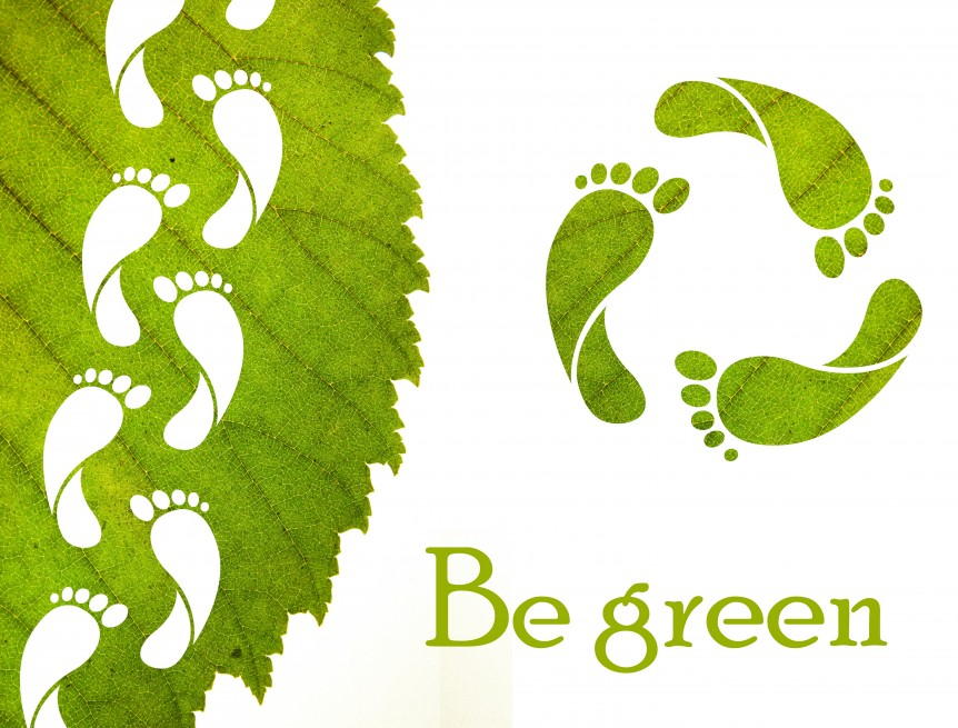reduce-carbon-footprint-862x655