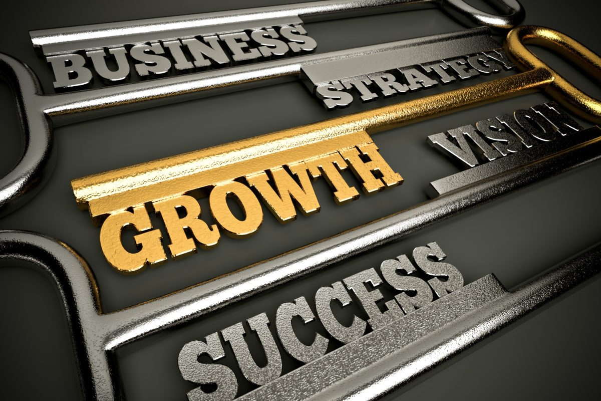 stages of new business growth